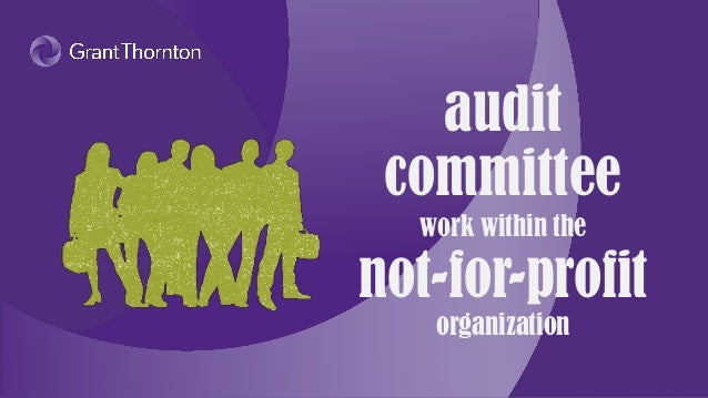 Audit committee work within the nonprofit organization