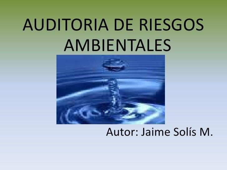 AUDITORIA DE RIESGOS AMBIENTALES<br />Autor: Jaime Solís M.<br />