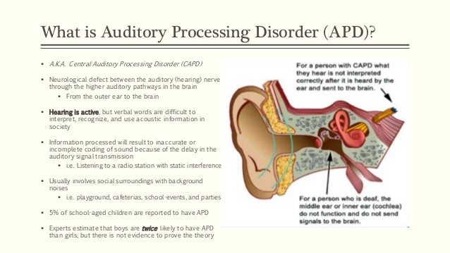 auditory processing disorder Auditory processing disorder 1 in 20 children may suffer from auditory processing disorder (apd) they can hear, but have trouble understanding what they hear.