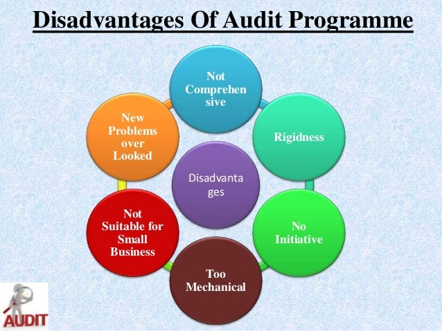 what are the advantages and disadvantages of an audit