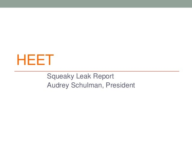 HEET Squeaky Leak Report Audrey Schulman, President