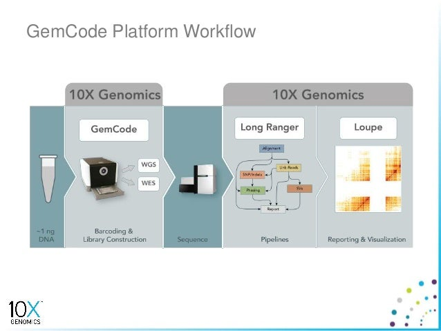 Aug2015 analysis team 04 10x genomics