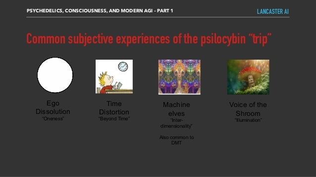 """Common subjective experiences of the psilocybin """"trip"""" PSYCHEDELICS, CONSCIOUSNESS, AND MODERN AGI – PART 1 LANCASTER AI E..."""