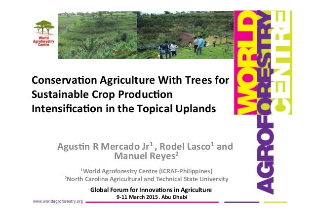 Agus%n	   R	   Mercado	   Jr1	   ,	   Rodel	   Lasco1	   and	    Manuel	   Reyes2	    	    1World	   Agroforestry	   Centr...