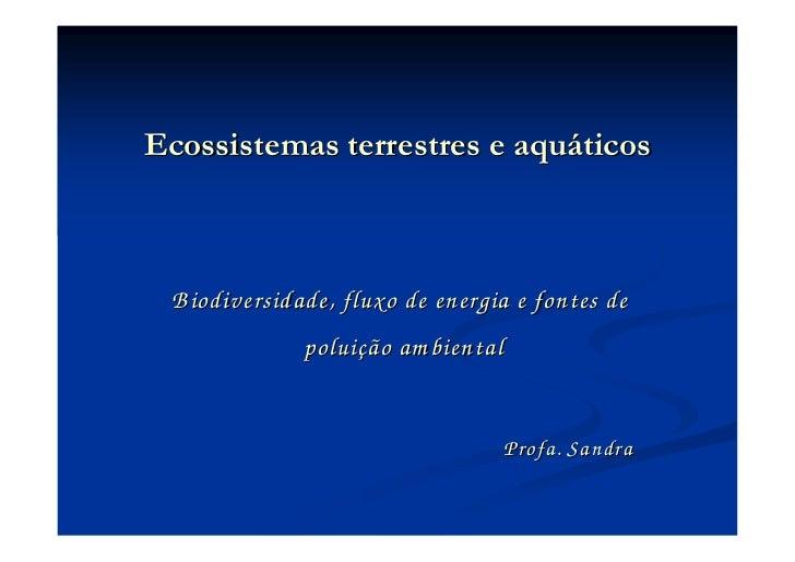 Ecossistemas terrestres e aquáticos     Biodiversidade, fluxo de energia e fontes de              polui ç ão am biental   ...