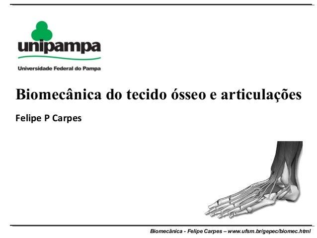 Biomecânica - Felipe Carpes – www.ufsm.br/gepec/biomec.htmlFelipe P CarpesBiomecânica do tecido ósseo e articulações