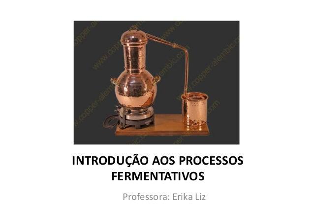 INTRODUÇÃO AOS PROCESSOS FERMENTATIVOS Professora: Erika Liz