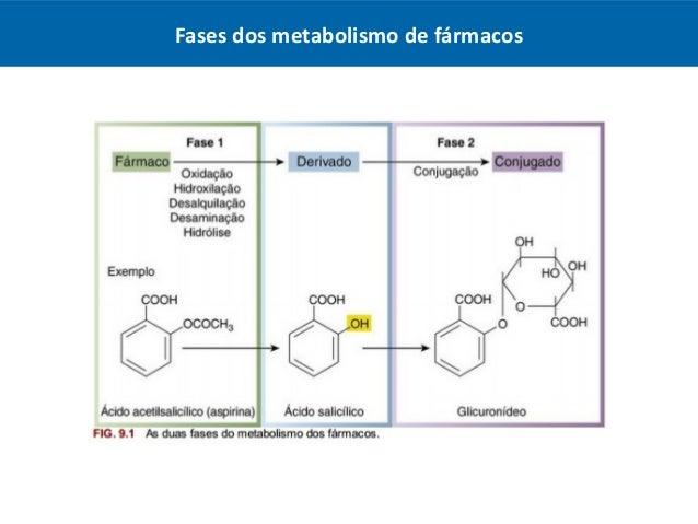 El poder de Metabolismo basal