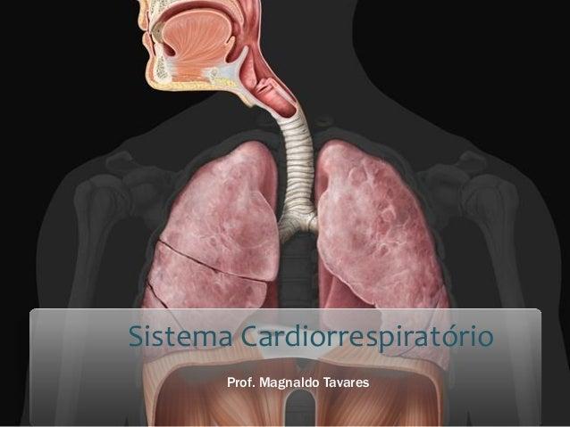 Sistema Cardiorrespiratório  Prof. Magnaldo Tavares