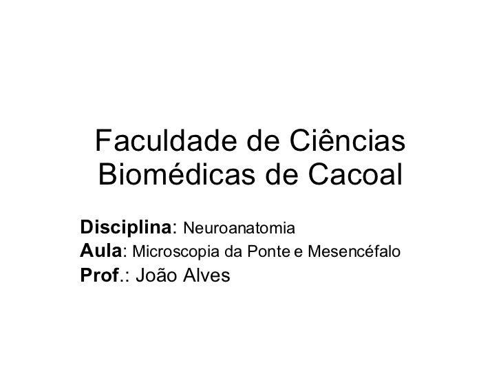Faculdade de Ciências Biomédicas de Cacoal Disciplina :  Neuroanatomia Aula :  Microscopia da Ponte e Mesencéfalo Prof .: ...