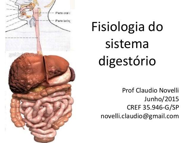 Fisiologia do sistema digestório Prof Claudio Novelli Junho/2015 CREF 35.946-G/SP novelli.claudio@gmail.com