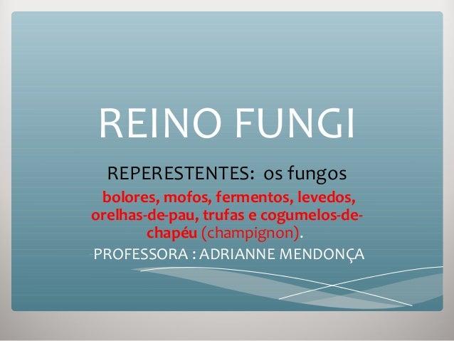 REINO FUNGIREPERESTENTES: os fungos-bolores, mofos, fermentos, levedos,orelhas-de-pau, trufas e cogumelos-de-chapéu (champ...