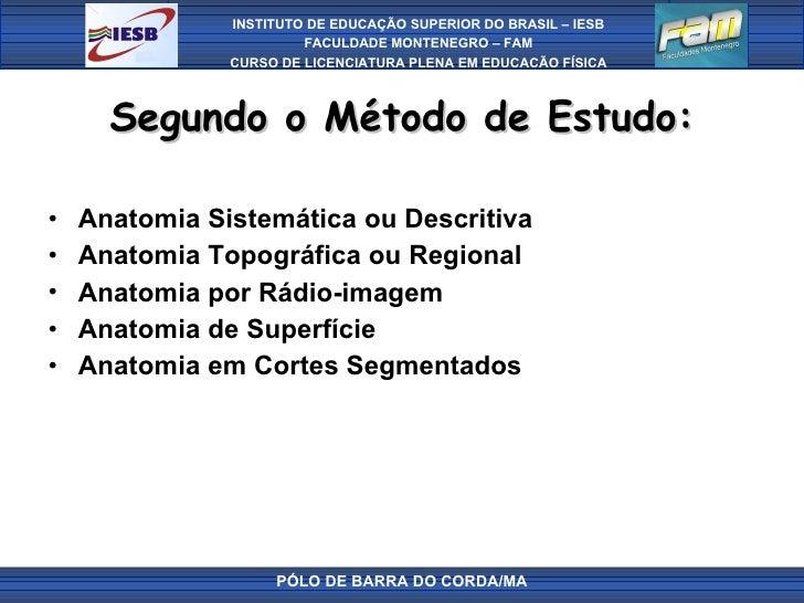 Segundo o Método de Estudo: <ul><li>Anatomia Sistemática ou Descritiva </li></ul><ul><li>Anatomia Topográfica ou Regional ...