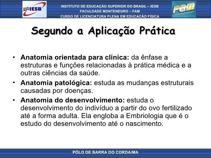 Segundo a Aplicação Prática  <ul><li>Anatomia orientada para clínica:  da ênfase a estruturas e funções relacionadas à prá...
