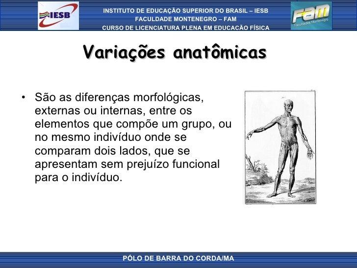 Variações anatômicas  <ul><li>São as diferenças morfológicas, externas ou internas, entre os elementos que compõe um grupo...