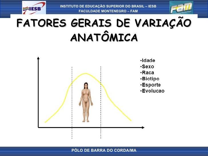 FATORES GERAIS DE VARIAÇÃO ANATÔMICA PÓLO DE BARRA DO CORDA/MA
