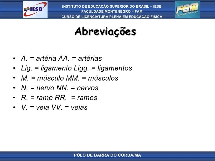 Abreviações  <ul><li>A. = artéria AA. = artérias </li></ul><ul><li>Lig. = ligamento Ligg. = ligamentos </li></ul><ul><li>M...