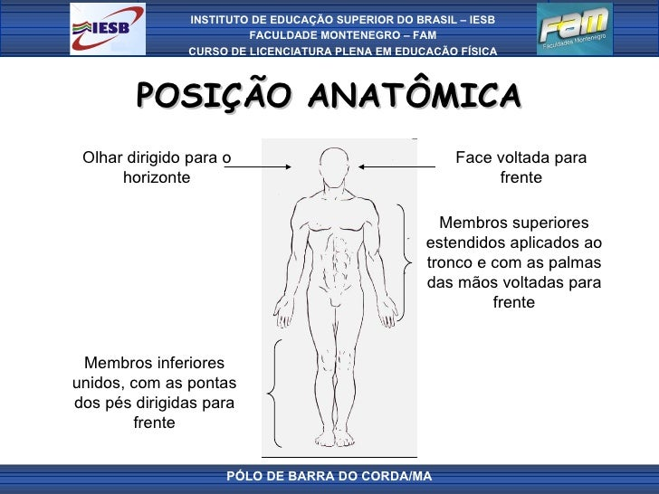 POSIÇÃO ANATÔMICA PÓLO DE BARRA DO CORDA/MA Face voltada para frente Olhar dirigido para o horizonte Membros superiores es...