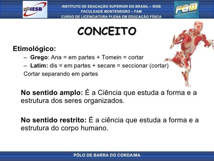 CONCEITO <ul><li>Etimológico: </li></ul><ul><ul><li>Grego : Ana = em partes + Tomein = cortar </li></ul></ul><ul><ul><li>L...