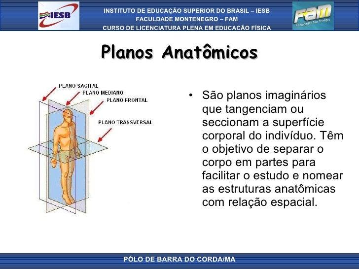 Planos Anatômicos <ul><li>São planos imaginários que tangenciam ou seccionam a superfície corporal do indivíduo. Têm o obj...