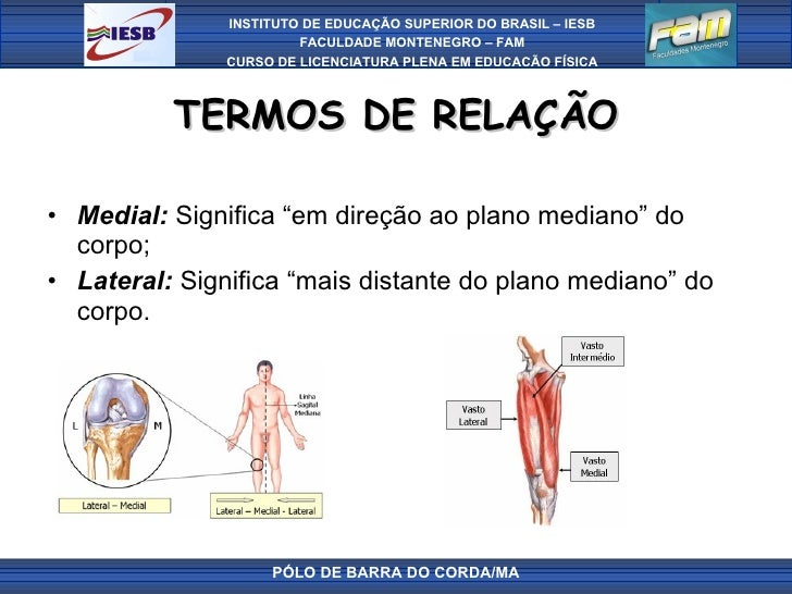 """TERMOS DE RELAÇÃO <ul><li>Medial:  Significa """"em direção ao plano mediano"""" do corpo; </li></ul><ul><li>Lateral:  Significa..."""
