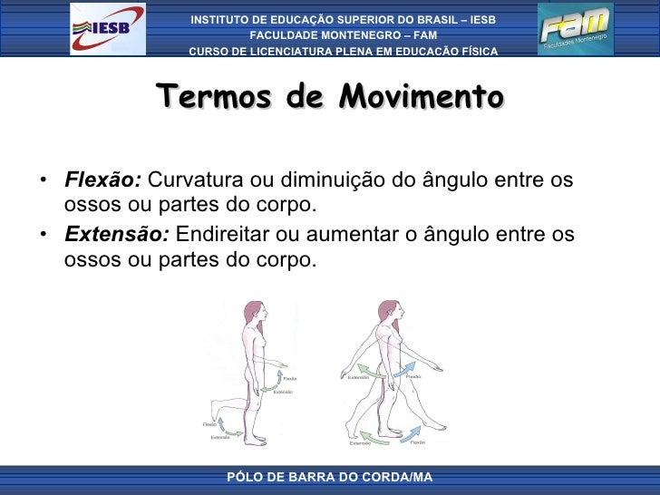 Termos de Movimento <ul><li>Flexão:  Curvatura ou diminuição do ângulo entre os ossos ou partes do corpo. </li></ul><ul><l...