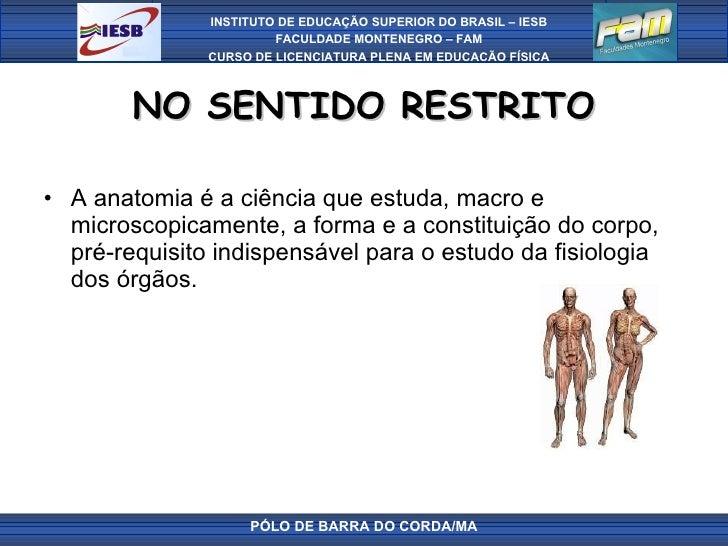 NO SENTIDO RESTRITO <ul><li>A anatomia é a ciência que estuda, macro e microscopicamente, a forma e a constituição do corp...