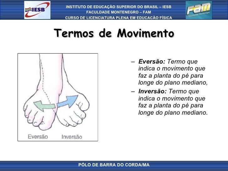 Termos de Movimento <ul><ul><li>Eversão:  Termo que indica o movimento que faz a planta do pé para longe do plano mediano,...