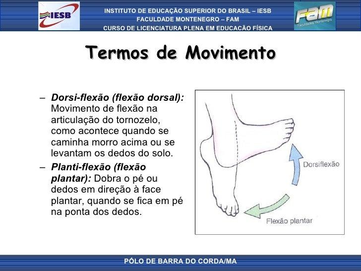 Termos de Movimento <ul><ul><li>Dorsi-flexão (flexão dorsal):  Movimento de flexão na articulação do tornozelo, como acont...
