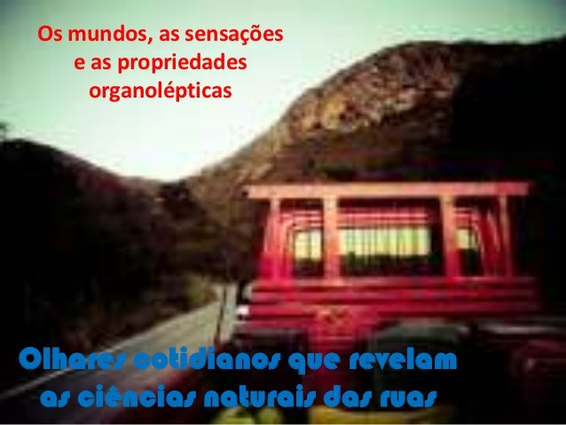 Os mundos, as sensações    e as propriedades      organolépticasOlhares cotidianos que revelam as ciências naturais das ruas