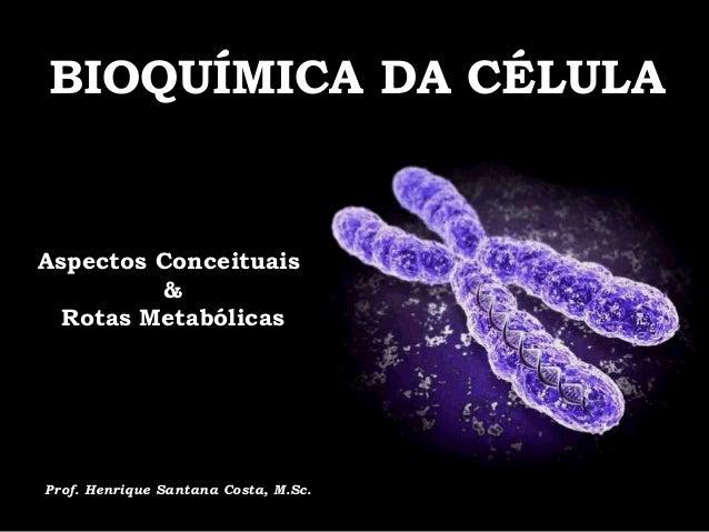 BIOQUÍMICA DA CÉLULA  Mutação e  Reparação  do DNA  Aspectos Conceituais  &  Rotas Metabólicas  Prof. Antonio Márcio Teodo...