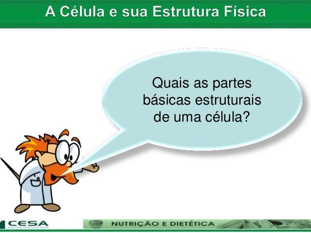 INSTITUTO DE EDUCAÇÃO SUPERIOR DO BRASIL – IESB FACULDADE MONTENEGRO – FAM CURSO DE LICENCIATURA PLENA EM EDUCAÇÃO FÍSICA ...