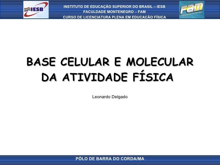 BASE CELULAR E MOLECULAR DA ATIVIDADE FÍSICA  Leonardo Delgado