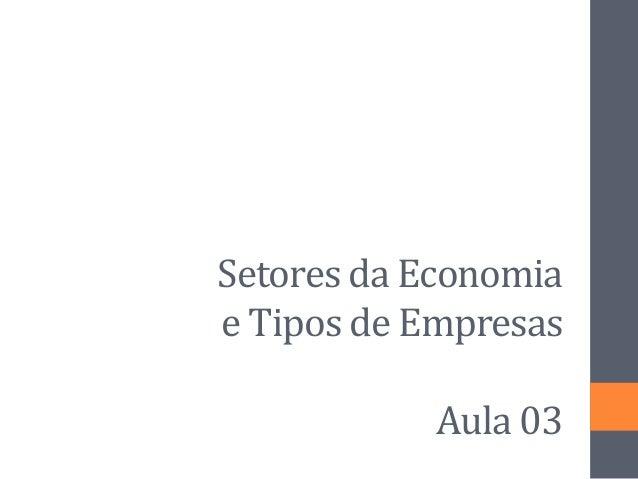 Setores da Economia e Tipos de Empresas Aula 03