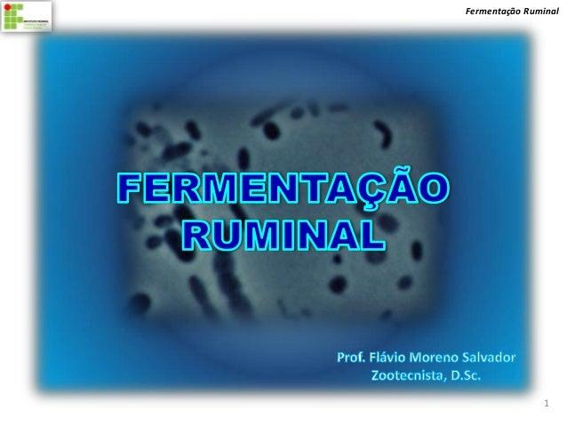 Fermentação Ruminal                1