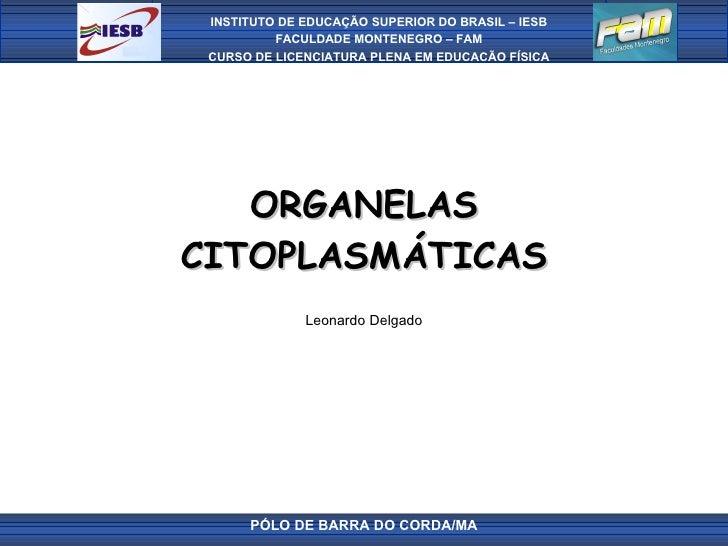 ORGANELAS CITOPLASMÁTICAS Leonardo Delgado