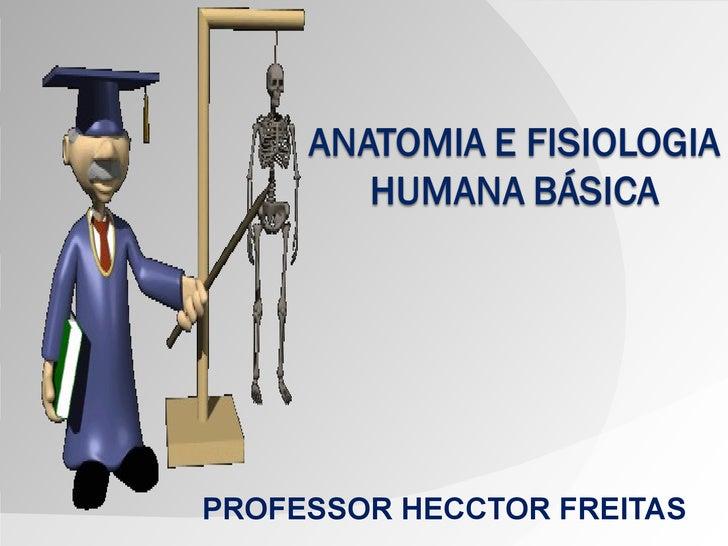 PROFESSOR HECCTOR FREITAS