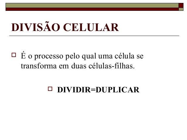 DIVISÃO CELULAR  É o processo pelo qual uma célula se transforma em duas células-filhas.  DIVIDIR=DUPLICAR
