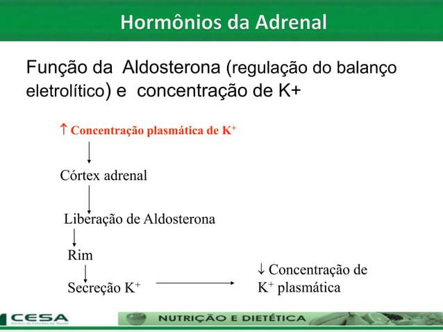  Concentração plasmática de K+ Córtex adrenal Liberação de Aldosterona Rim Secreção K+  Concentração de K+ plasmática Fu...