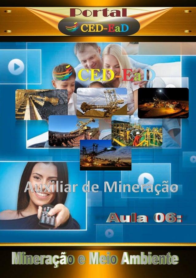 A u x i l i a r t é c n i c o e m M i n e r a ç ã o Politicas do setor mineral; Departamento Nacional de Produção Mineral ...