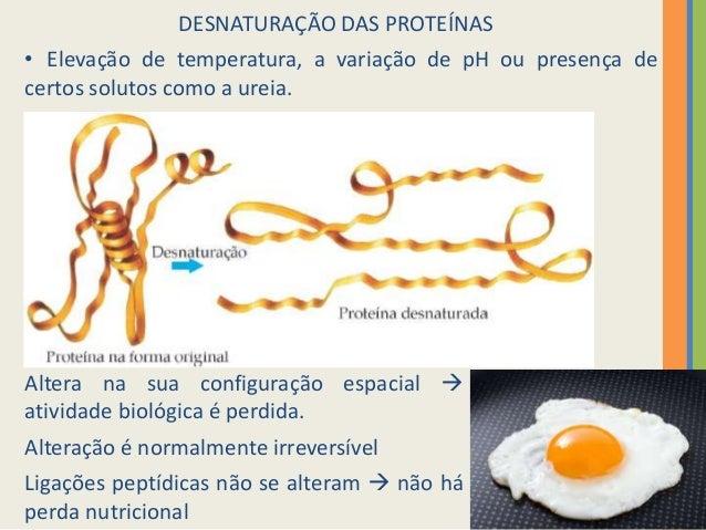 Sintese de proteinas yahoo dating 2