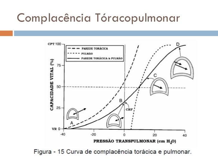 Aula 07 fisiologia - mecanismos da respiração