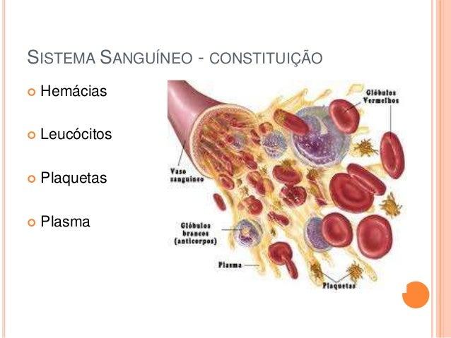 SISTEMA SANGUÍNEO - CONSTITUIÇÃO   Hemácias    Leucócitos    Plaquetas    Plasma