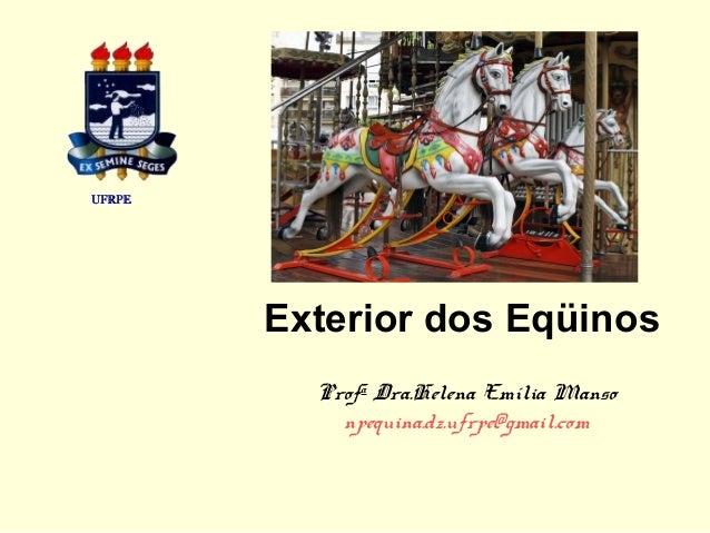 Exterior dos Eqüinos Profa Dra.Helena Emília Manso npequina.dz.ufrpe@gmail.com UFRPEUFRPE