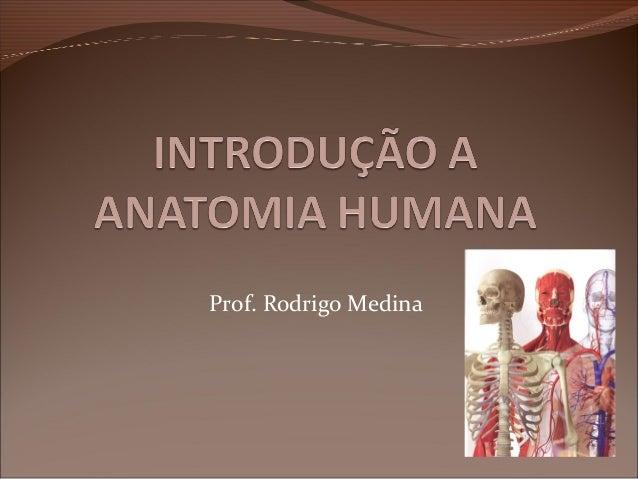 Prof. Rodrigo Medina
