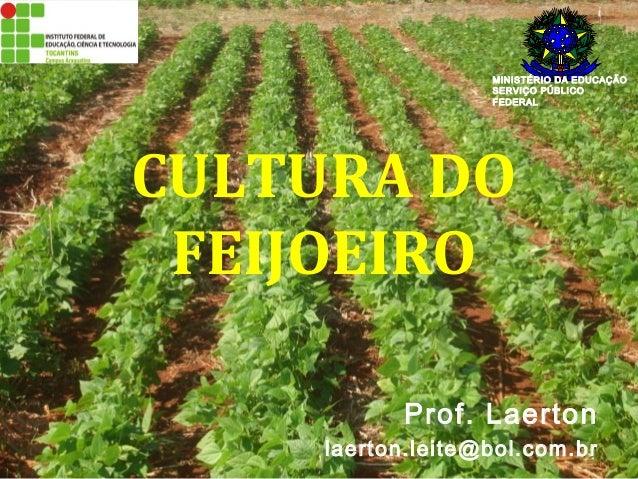 MINISTÉRIO DA EDUCAÇÃO  SERVIÇO PÚBLICO  FEDERAL  CULTURA DO  FEIJOEIRO  Prof. Laerton  laerton.leite@bol.com.br