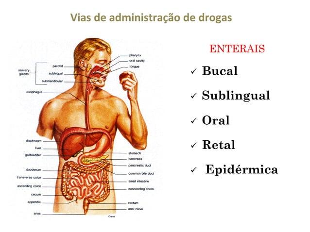 Vias  de  administração  de  drogas   ENTERAIS ü  Bucal  ü  Sublingual  ü  Oral  ü  Retal  ü  Epidérmi...