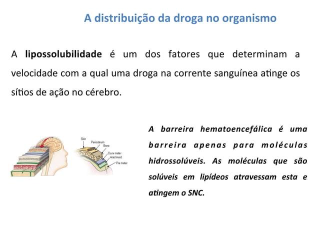 A  distribuição  da  droga  no  organismo   A   lipossolubilidade   é   um   dos   fatores   que ...