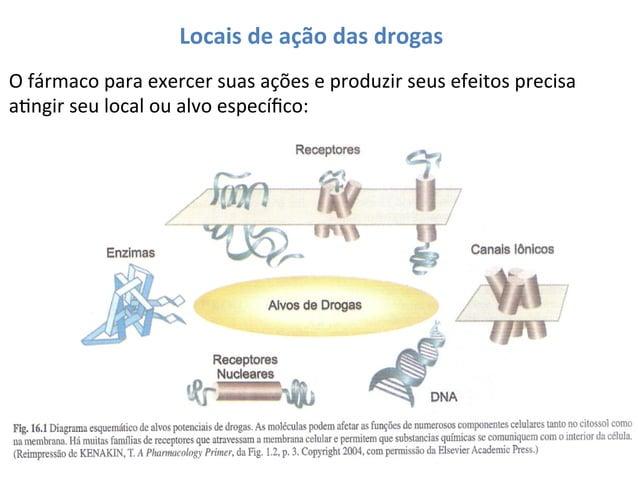 Locais  de  ação  das  drogas   O  fármaco  para  exercer  suas  ações  e  produzir  seus  efe...