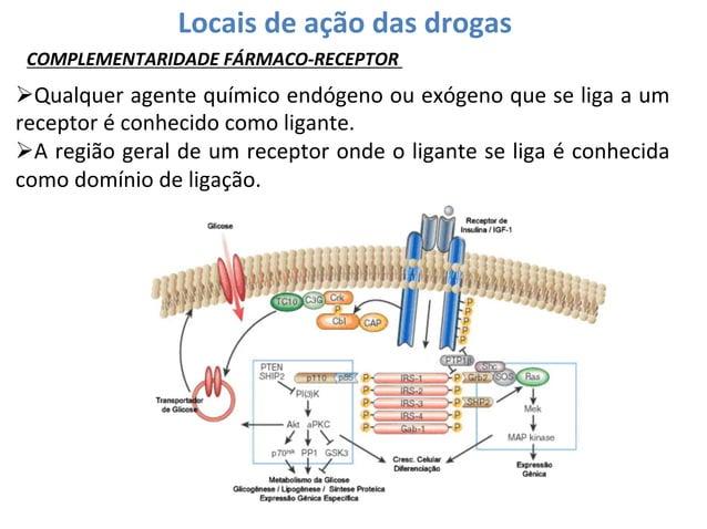 Locais  de  ação  das  drogas   COMPLEMENTARIDADE  FÁRMACO-‐RECEPTOR    ØQualquer  agente  químico  ...